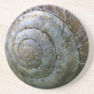 Snail Shell Coaster