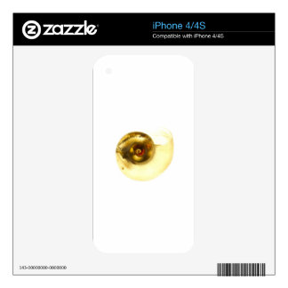 Snail Shell Decal For The iPhone 4S