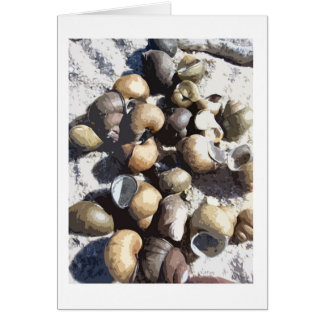 Snail Shells Card