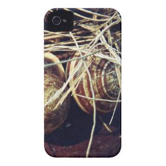 Snail Shells iPhone 4 Case