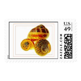 Snail Shells Postage