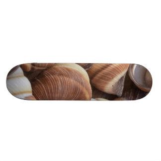 Snail Skate Boards