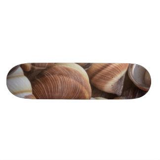 Snail Skateboard Deck