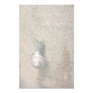 Snail Stationery Design