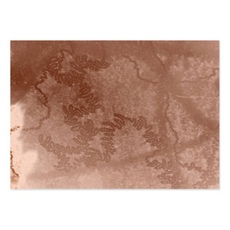 Snail trail on brown bark texture business card templates