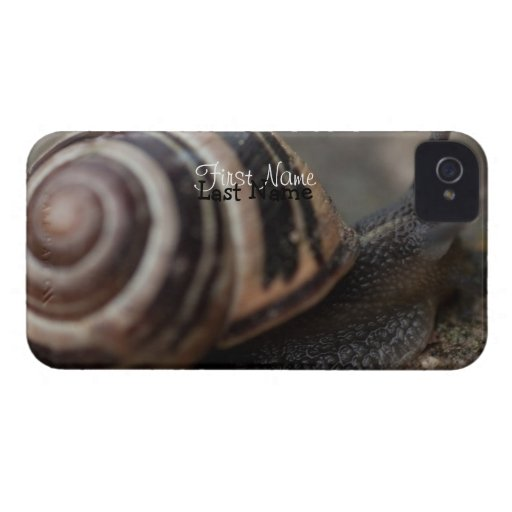 Snail Up Close Case-Mate iPhone 4 Cases