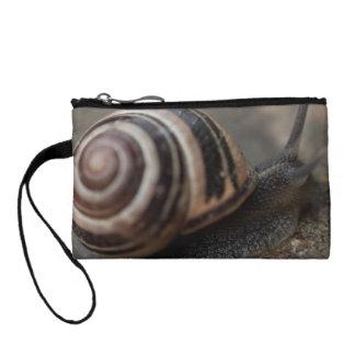 Snail Up Close Coin Purse