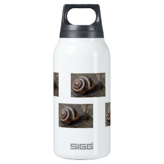 Snail Up Close Insulated Water Bottle