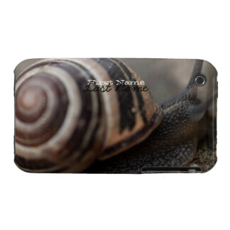 Snail Up Close iPhone 3 Cover