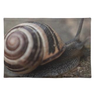 Snail Up Close Placemat