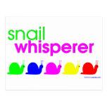 Snail Whisperer Post Cards