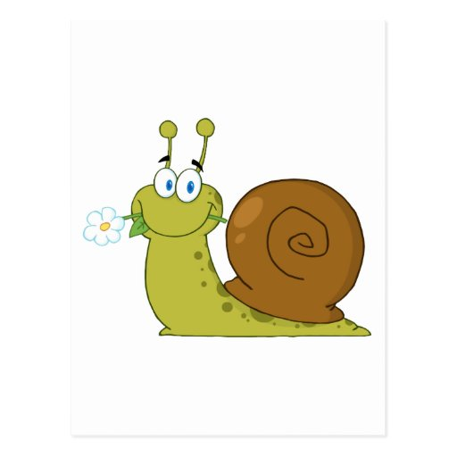 Snail With A Flower In Its Mouth Post Cards
