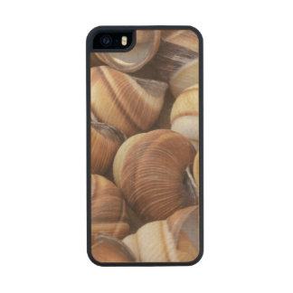 Snail Carved® Maple iPhone 5 Case