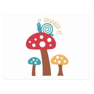 Snailed él tarjeta postal