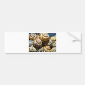 snails bumper sticker