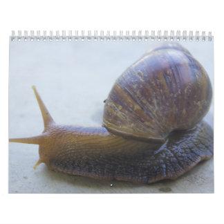 Snails Calendar