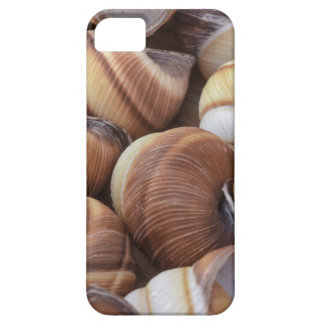 Snails iPhone 5 Covers