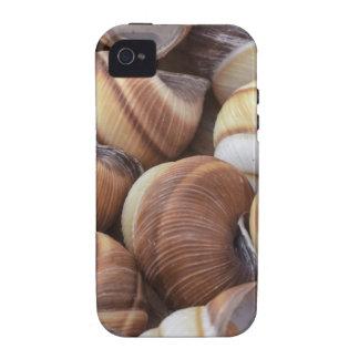 Snails iPhone 4 Cases