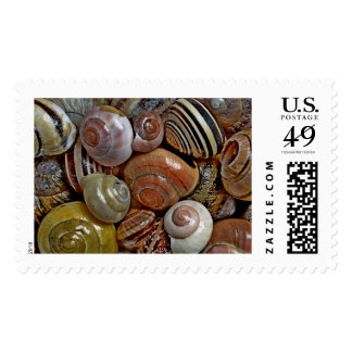 Snails from a French garden Postage Stamp