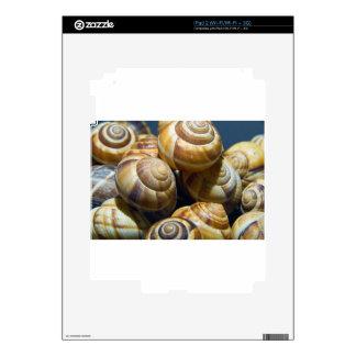 snails iPad 2 decal
