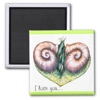 Snails magnet