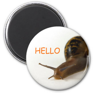 snails pace 2 inch round magnet