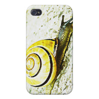 Snail's Pace iPhone 4 Case