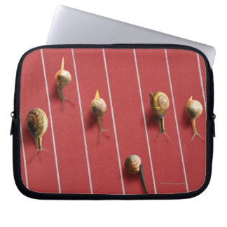 Snails running on the truck computer sleeve