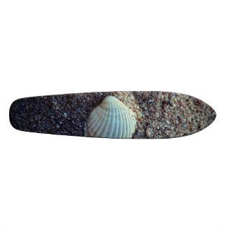 Snailshell Skate Decks