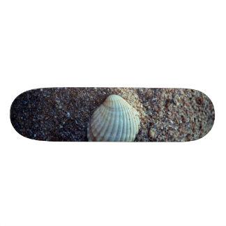 Snailshell Skateboard Deck