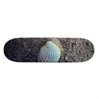 Snailshell Skateboard Decks