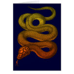 snake2 greeting cards