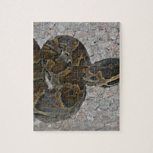 snake 24.jpg puzzle
