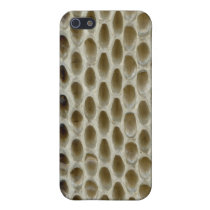 snake 4 casing iPhone SE/5/5s cover