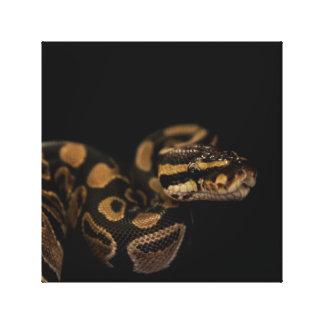 Snake Accent Home Decor Canvas Print