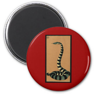 Snake - Antiquarian, Colorful Book Illustration 2 Inch Round Magnet