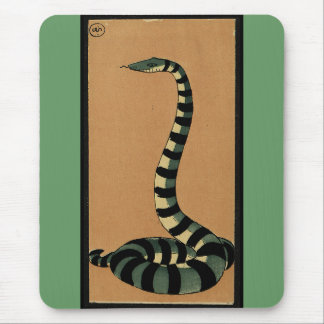 Snake - Antiquarian, Colorful Book Illustration Mouse Pad