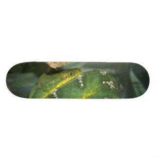 Snake Board Skate Board
