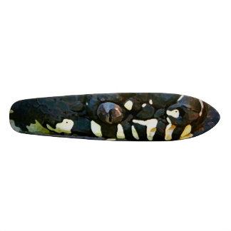 Snake board skate board deck