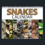 "Snake Calendar<br><div class=""desc"">Monthly Snake Calendar is a great gift! A variety of snakes are included: Plains black-headed,  western diamondback rattlesnake,  western hognosed,  brown tree,  pine woods,  glossy,  copperhead,  Texas longnose,  canebreak,  and nightsnake make a great snake photography calendar.</div>"