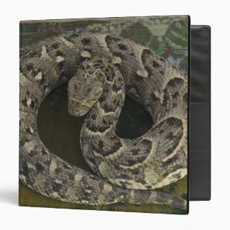 Snake Charmer's African Puff-adder Bitis Binder