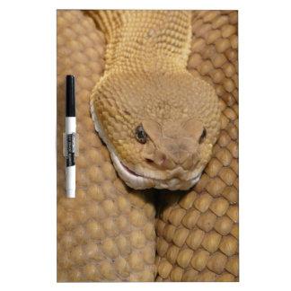 Snake Dry-Erase Boards