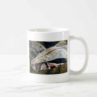 Snake eyes boa constrictor mugs