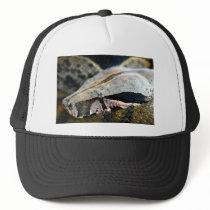 Snake eyes boa constrictor trucker hat