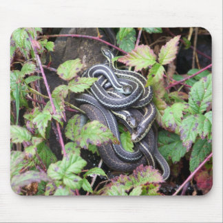 Snake Family Mouse Pad