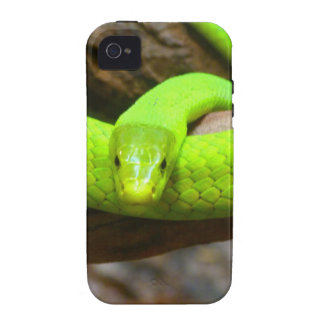 Snake Green Mamba Animal Scary Party Destiny iPhone 4 Covers