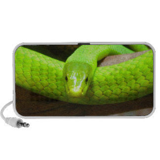 Snake Green Mamba Animal Scary Party Destiny iPhone Speakers