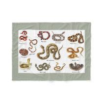 Snake Identification Blanket