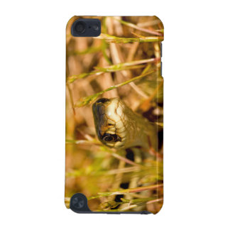 Snake in the Grass iPod Touch 5G Covers