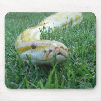Snake in the Grass Mouse Pad